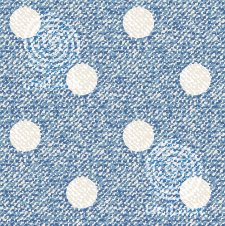 FITSYSTEM Style Design A #DENIM DOT